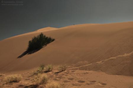 Ałtyn Emel – złote siodło Czyngis-chana