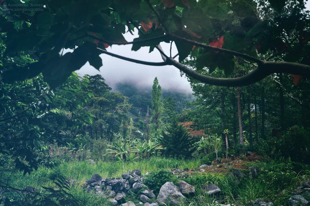 szwed-panama-lasy-deszczowe27