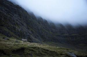 Wyspy Owcze: okolice opuszczonej wioski Muli