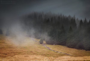 Tatry: jesienna Rusinowa Polana