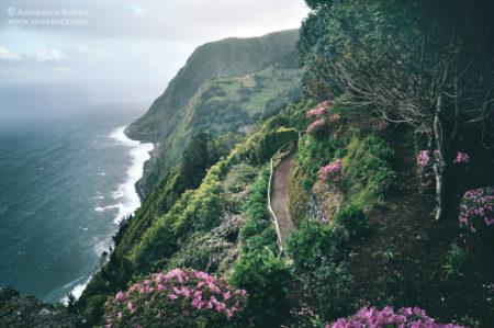 Azory – zielona oaza na Atlantyku