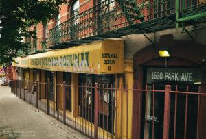 Nowy Jork: Botnica w Harlemie