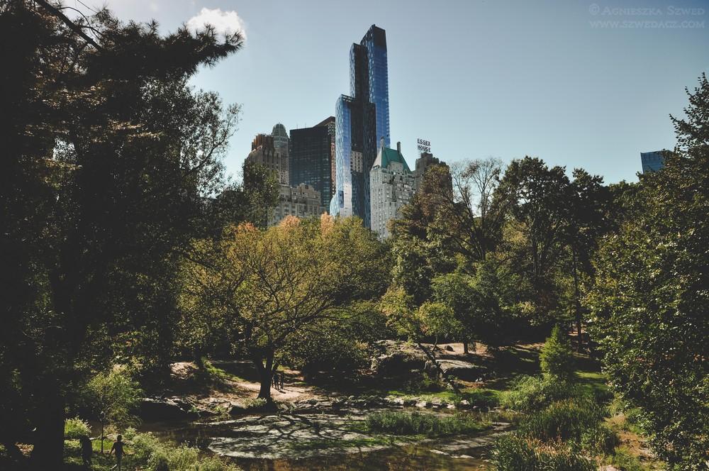 Central Park wNowym Jorku