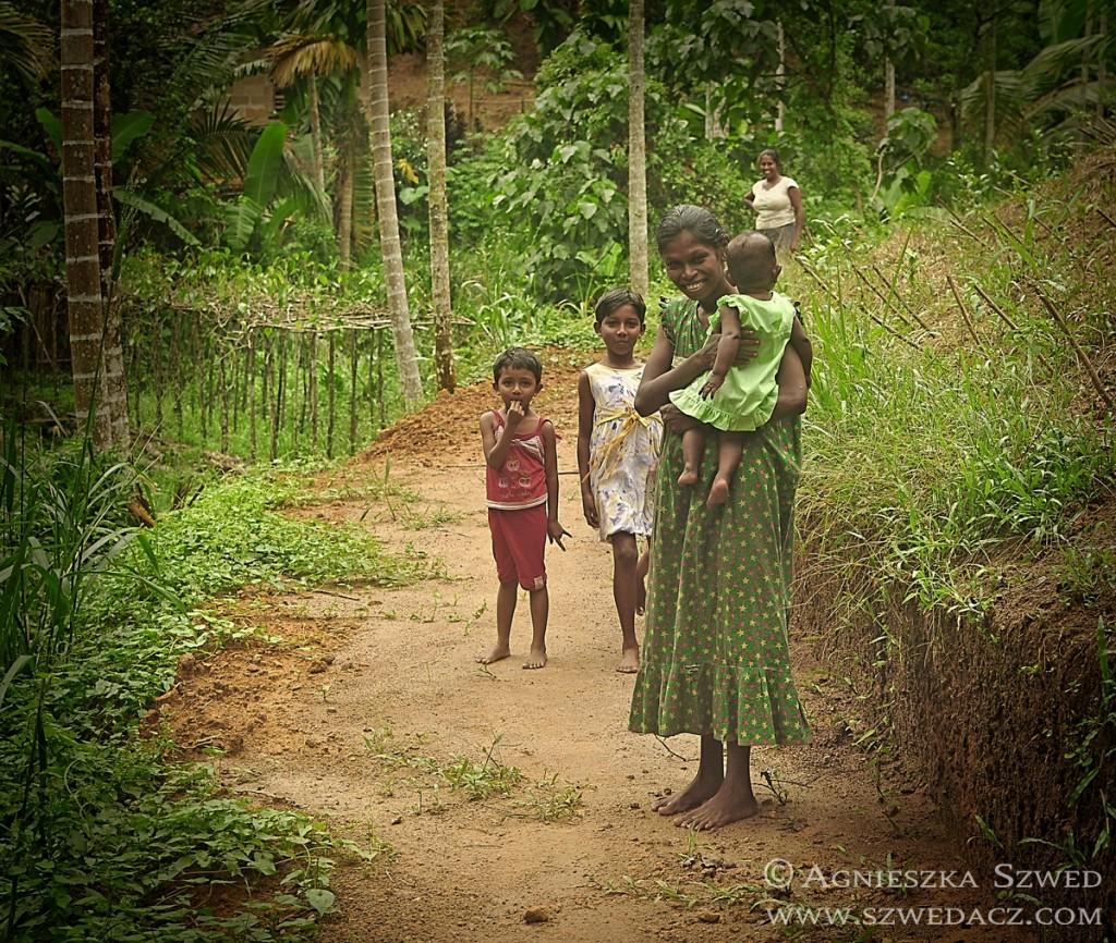Sri Lanka - Kottawa Forest 08
