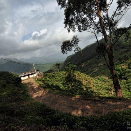 Sri Lanka, Knuckles Range