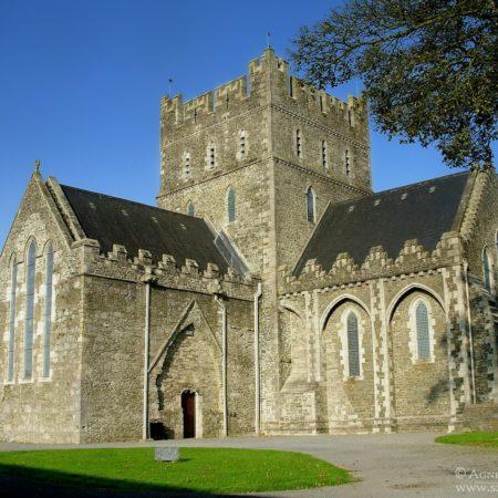 katedra w Kildare
