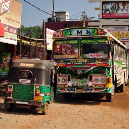 lankijskie autobusy