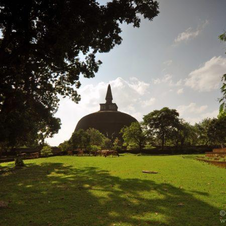 Polonnaruwa, dagoba
