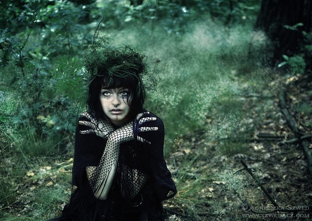 W Magicznym Lesie – sesyjnie