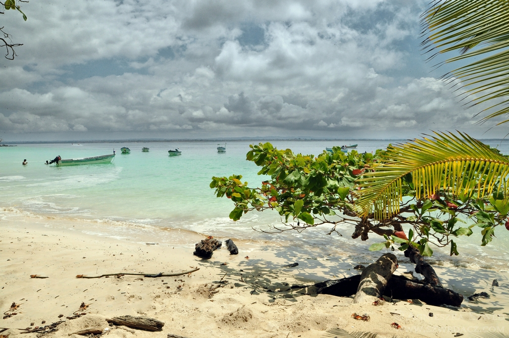 Iguana Island – legwany, kraby i bomby