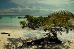 plaża na Isla Iguana, Iguana Island