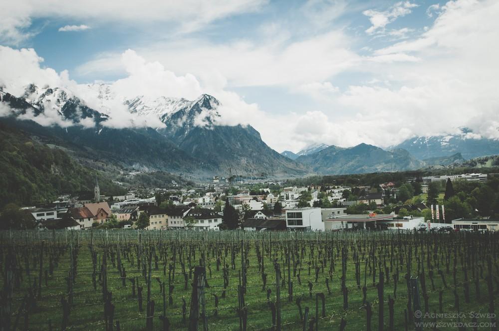 Winnice w Vaduz