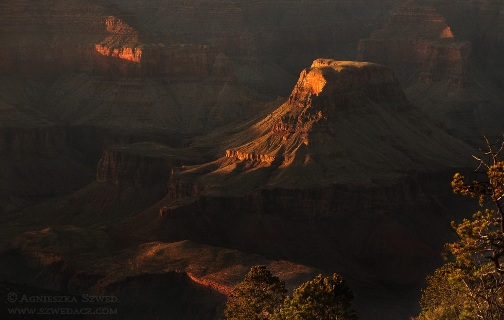 szwedacz-usa-grand-canyon21