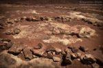 Tuba City Dinosaur Tracks, ślady dinozaurów w USA