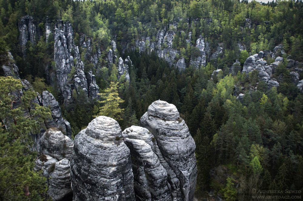 Saksońska Szwajcaria. Widoki z Bastei.