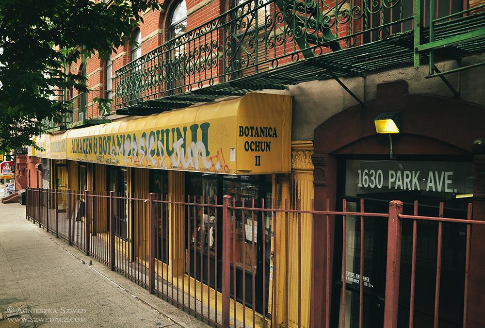 Nowy Jork: Botnica wHarlemie