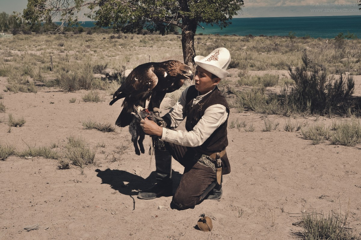 Polowanie z orłami - sokolnicy w Kirgistanie