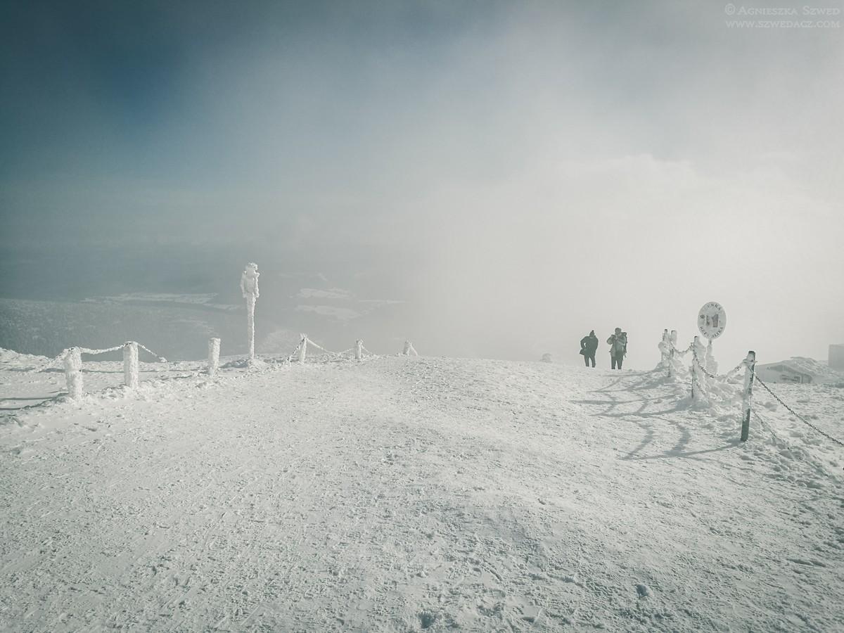 Śnieżka zimą