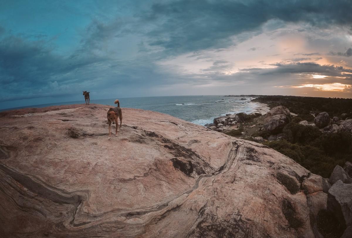 Kirinda, Sri Lanka - plaża