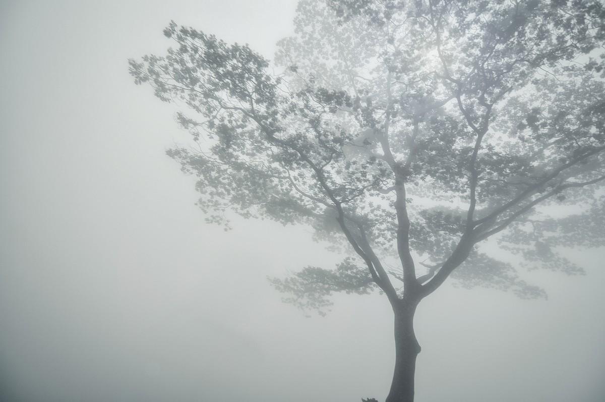 Knuckles Mountain Range - Sri Lanka