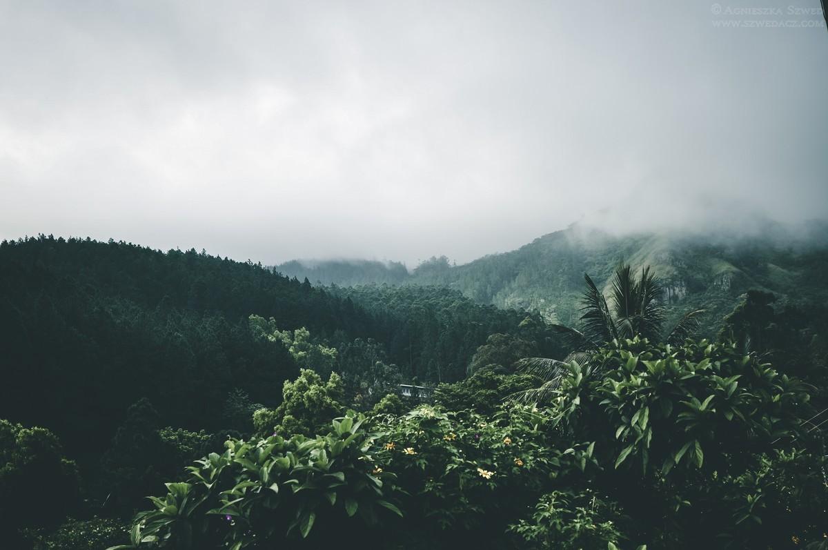 Wakacje na Sri Lance? Poznaj mniej znane atrakcje wyspy.