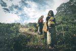 Plantacje herbaty na Sri Lance