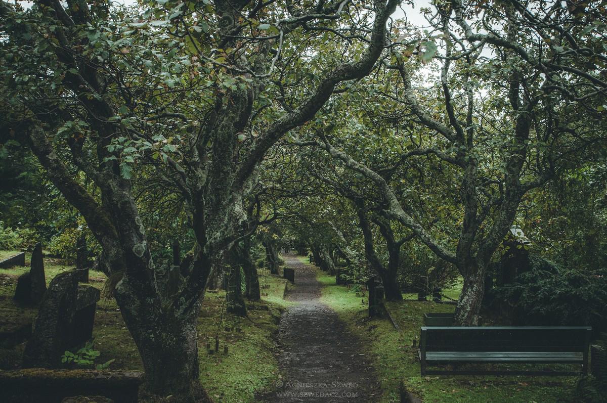 Cmentarz w Thorshavn