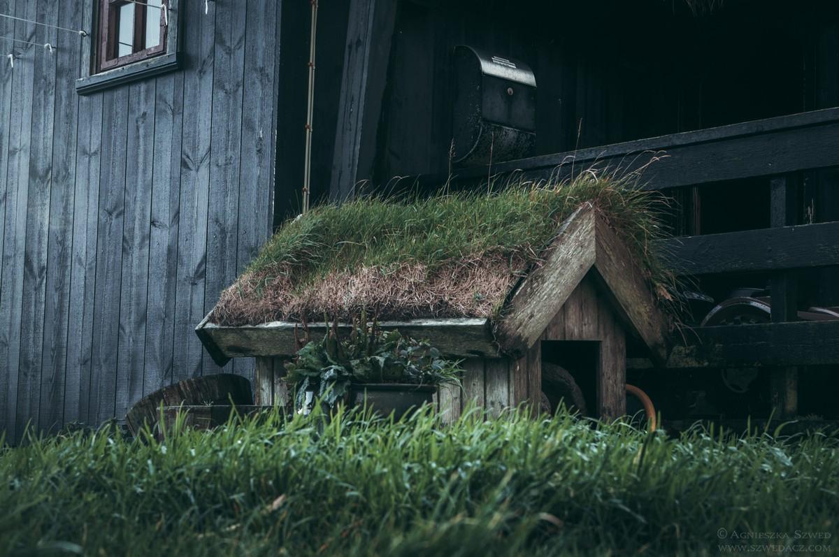 Kirkjubøur - buda dla psa pokryta trawą