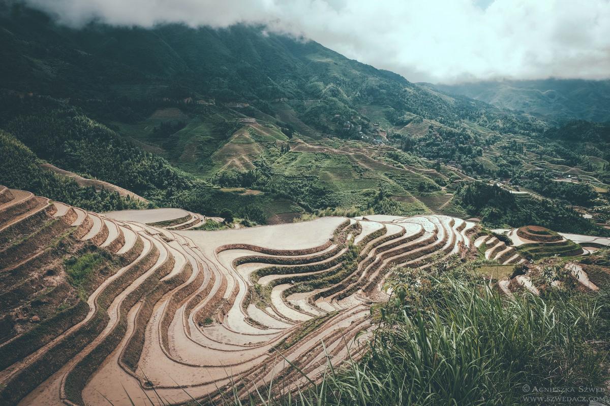 Tarasy ryżowe Longsheng
